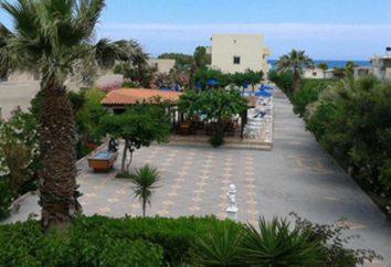 Armonia Beach Hotel (Grecia, Creta.): Foto, descrizione e recensioni