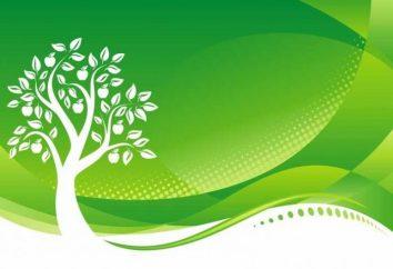 Journée mondiale de l'environnement – une fête importante
