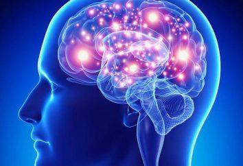 Epilessia (caduta della malattia): cause e trattamento
