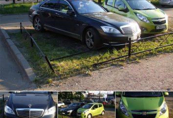 Nielegalne parkowanie na trawnikach: artykuł, kara, kara