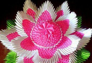 Origami Module: Blume. Modular Origami mit ihren Händen