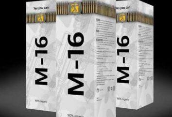 Spray M16: recenzje i poprowadzić