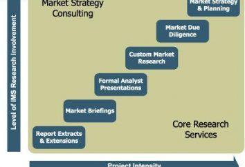 Ein Beispiel für Marktforschung und präsentieren die Ergebnisse in einem Bericht