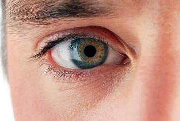 Che cosa significa quando un uomo guarda negli occhi?