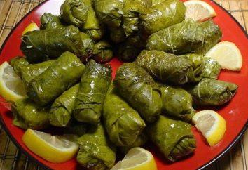 feuilles de vigne dolma: une recette pour un délicieux plats orientaux