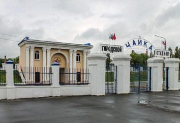 """Voronezh estadio de """"La gaviota"""" – el lugar de descanso activo para los ciudadanos de la ciudad"""