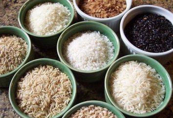 Tipos de arroz e seu uso na culinária