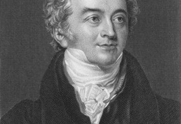 Thomas Young: wkład do fizyki