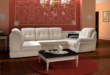 Mobili imbottiti per il salotto: divani di alta qualità e poltrone