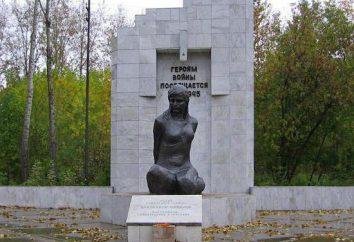 Lisa Chaikin. La Gran Guerra Patria. Héroe de la Unión Soviética