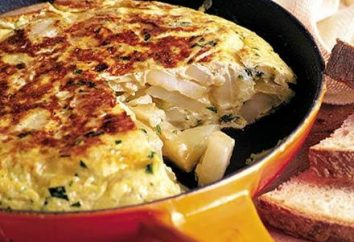 Omelette: Kaloriengehalt und Vielfalt