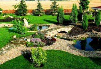 Pomysł na ogród: własne ręce, można tworzyć stylizowane krajobrazu