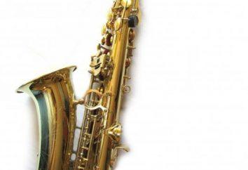 saxophone alto – tous les détails