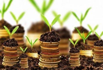 Czy nie zaciągać kredyty w 2014 roku? Sbierbank – wszystkie kredyty