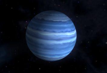 Neptuno – el planeta de 8 en una fila contra el sol. datos de Interés