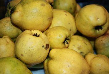confiture de coing au citron et noix: une étape recette pas à pas