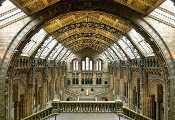 Museu de História Natural (Londres): história da criação, zonas, exposições
