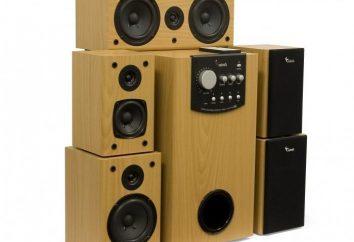 Genius Speaker – tych, którzy wiedzą, jak słuchać