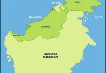 Description Kalimantan
