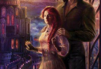 Melhor fantasia amor: livros de taxa