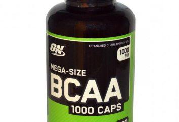 ¿Cuáles son los BCAA? En algunos casos es necesario tomar aminoácidos?