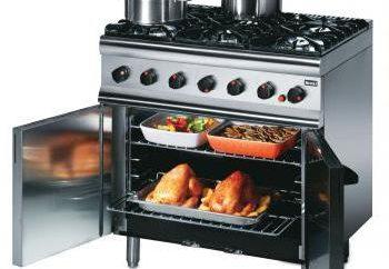 Insostituibile opzione, o di cosa è un forno a convezione?