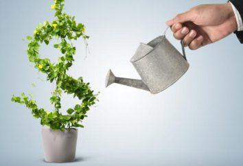 Strata na sprzedaży: okablowanie. Rachunkowość dla wyników sprzedaży finansowych: okablowanie i przykłady