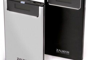 A maioria dos multifleshka Zalman VE300: detalhes, opiniões, fotos