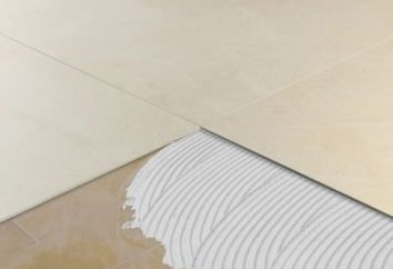 Cómo pegar las baldosas en el azulejo en el baño en el suelo y en la pared?