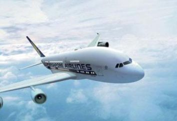 Singapore Airlines: sito ufficiale e recensioni aeree