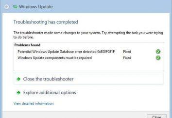 Não trabalhando Update Center Windows 7: O que fazer?