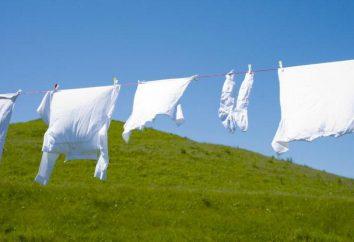 Lorsque, dans la machine à laver pour remplir de poudre liquide: des instructions étape par étape et caractéristiques