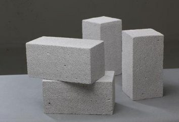 Mousse blocs de béton: les avantages et les inconvénients de la matière