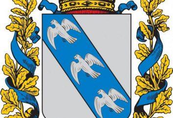 Escudo de armas de Kursk: descripción y el valor