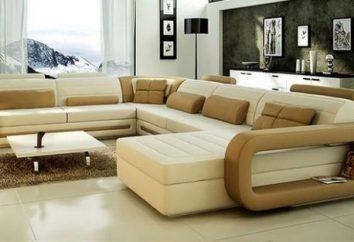 Arten von Sofas. Typen ausklappbares Sofa. Arten der Transformation von Sofas