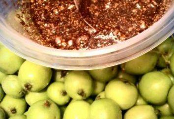 Jak przygotować się do zimy kiszone jabłka z mąki żytniej i innych przepisów