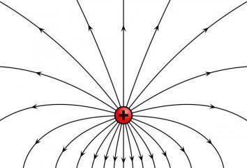 Caratteristiche e le caratteristiche principali dei campi elettrici
