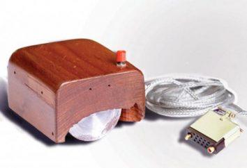 """Manipulator """"mysz"""" – urządzenie wejściowe. Mysz komputerowa i ich rodzaje"""