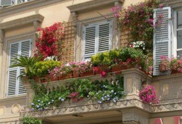La conception du balcon – de grandes opportunités dans un petit espace