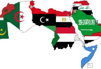 Les pays arabes. Palestine, la Jordanie, l'Irak