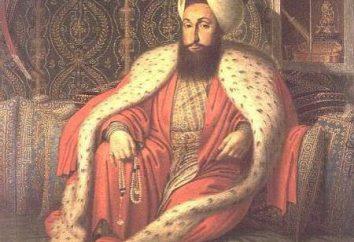 El colapso del Imperio Otomano: historia, causas, efectos y datos interesantes