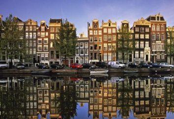 Centrum wiza Holandia pomoże sporządzić dokumenty