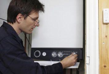 Heizung ein privates Haus einen elektrischen Boiler: Bewertungen, Kosten und Schaltung