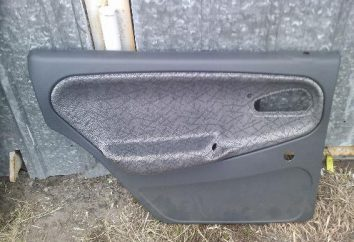 Panneaux de porte VAZ 2110 – enlèvement, installation, rembourrage