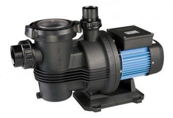 Pompe à eau: une pompe de surface pour donner. Conseils pour choisir et commentaires