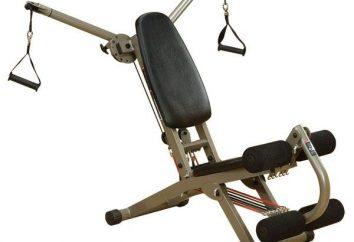 Exercices de base dans la salle de gym pour les débutants