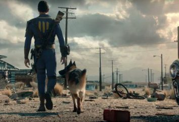 oggetti d'identità in Fallout 4: armi, materiali e armature