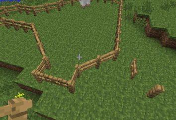 """Come rendere un recinto in """"Maynkraft"""": dichiarazione"""