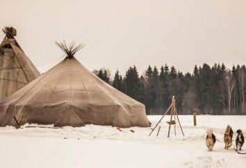 """Ethnopark """"Nomad"""" – un pezzo del presente tundra a Mosca"""