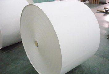 papel revestido – o que é? fosco papel revestido e brilhante